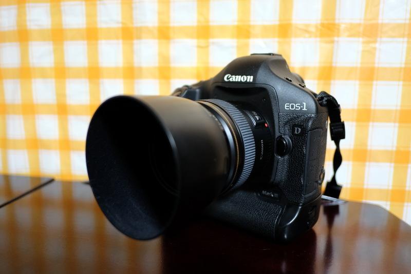 DSCF8152 EOS 1D3 EF85mm F1.8